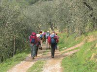 Trekking ecoturismo natura